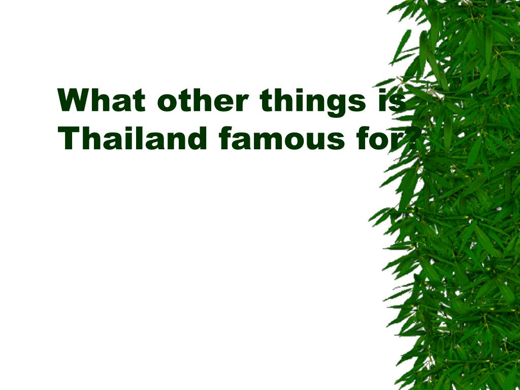 What other things is Thailand famous for?