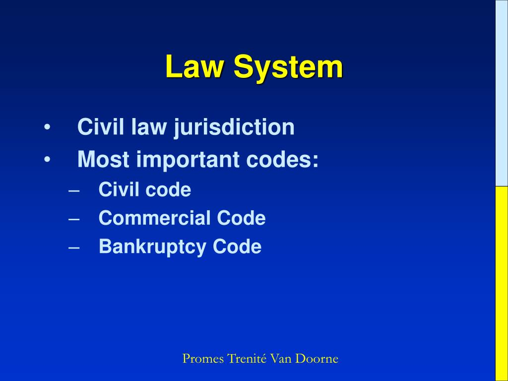 Law System