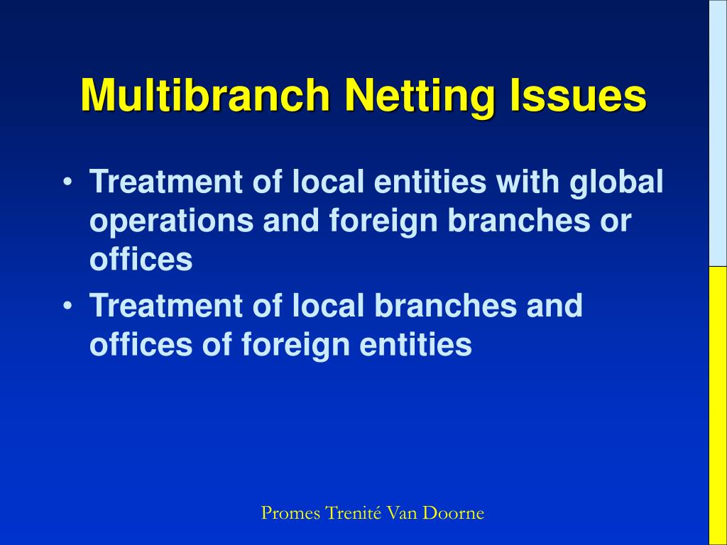 Multibranch Netting Issues