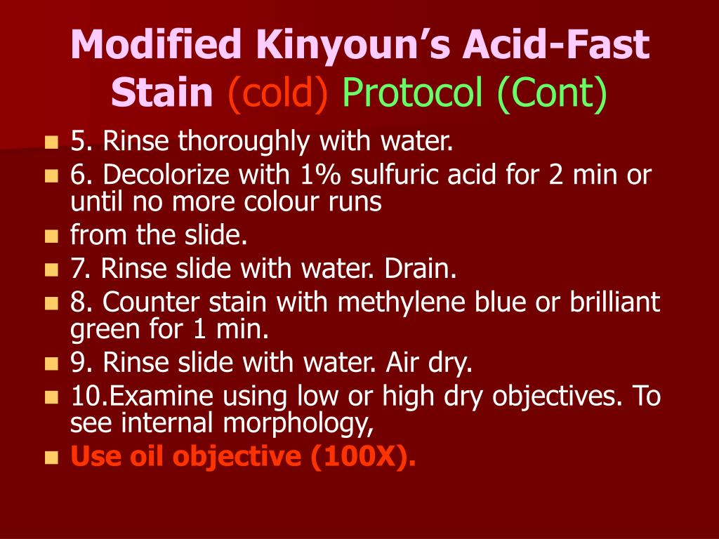 Modified Kinyoun's Acid-Fast Stain
