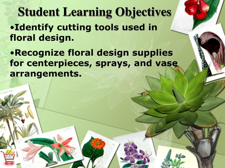 Identify cutting tools used in floral design.