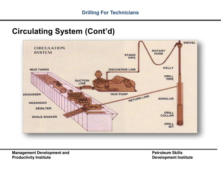 Circulating System (Cont'd)