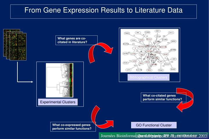 What genes are co-citated in literature?