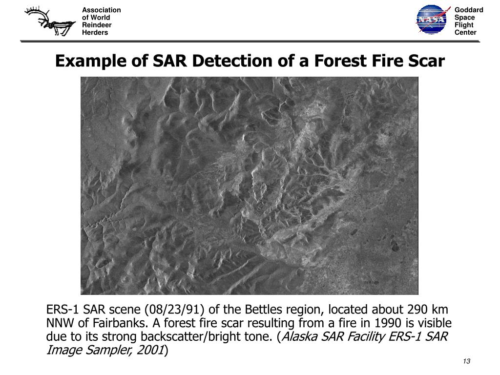 Example of SAR Detection of a Forest Fire Scar
