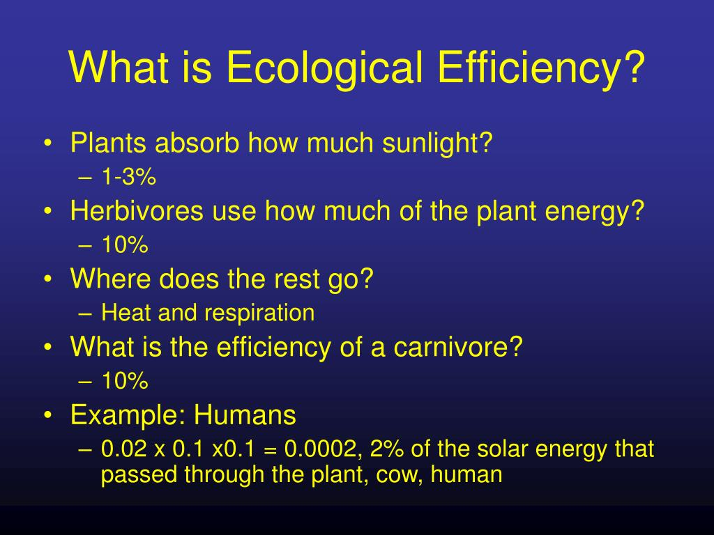 What is Ecological Efficiency?