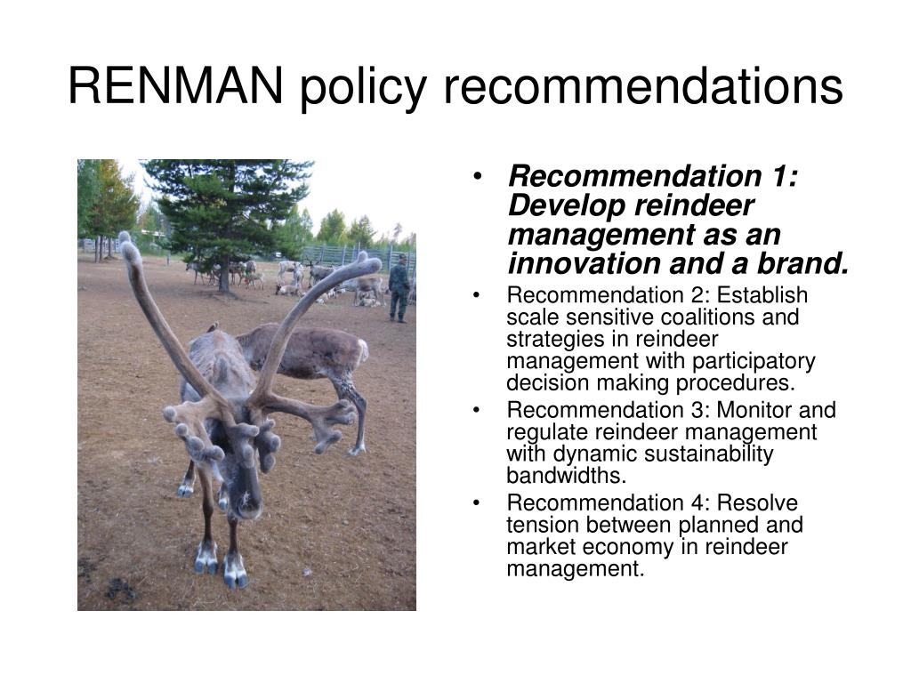 RENMAN policy recommendations