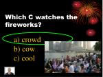 which c watches the fireworks