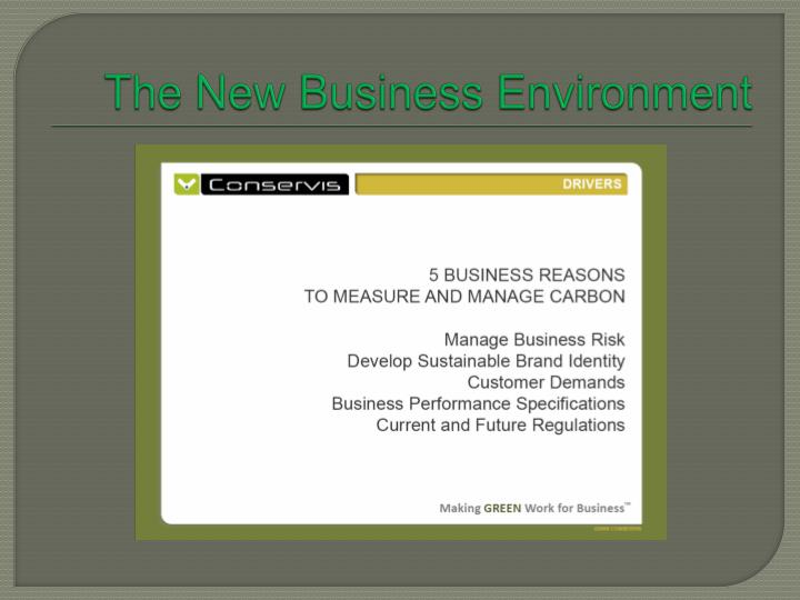 The New Business Environment