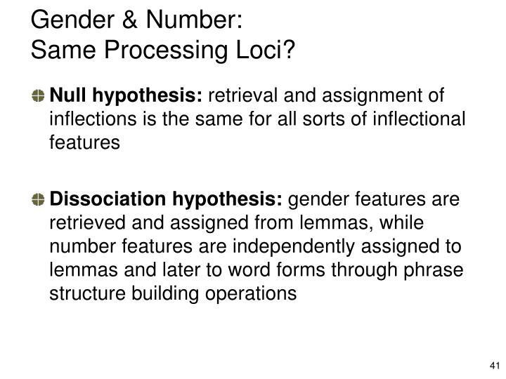 Gender & Number: