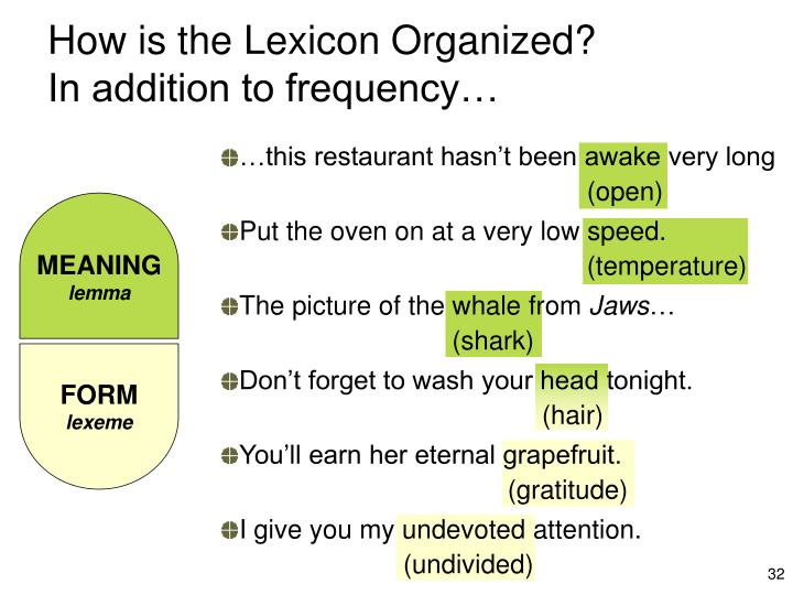 How is the Lexicon Organized?
