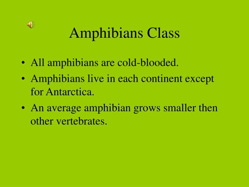 Amphibians Class