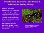 evolutionary innovations and trends in salamander feeding biology