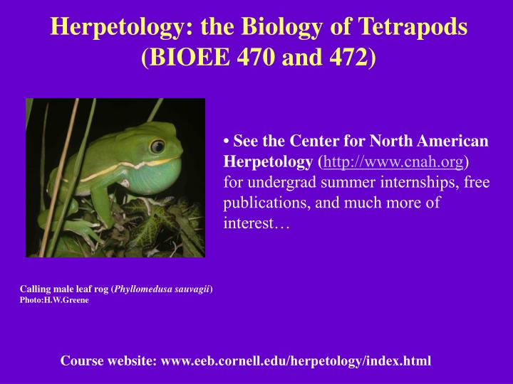 Herpetology the biology of tetrapods bioee 470 and 472