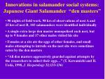 innovations in salamander social systems japanese giant salamander den masters