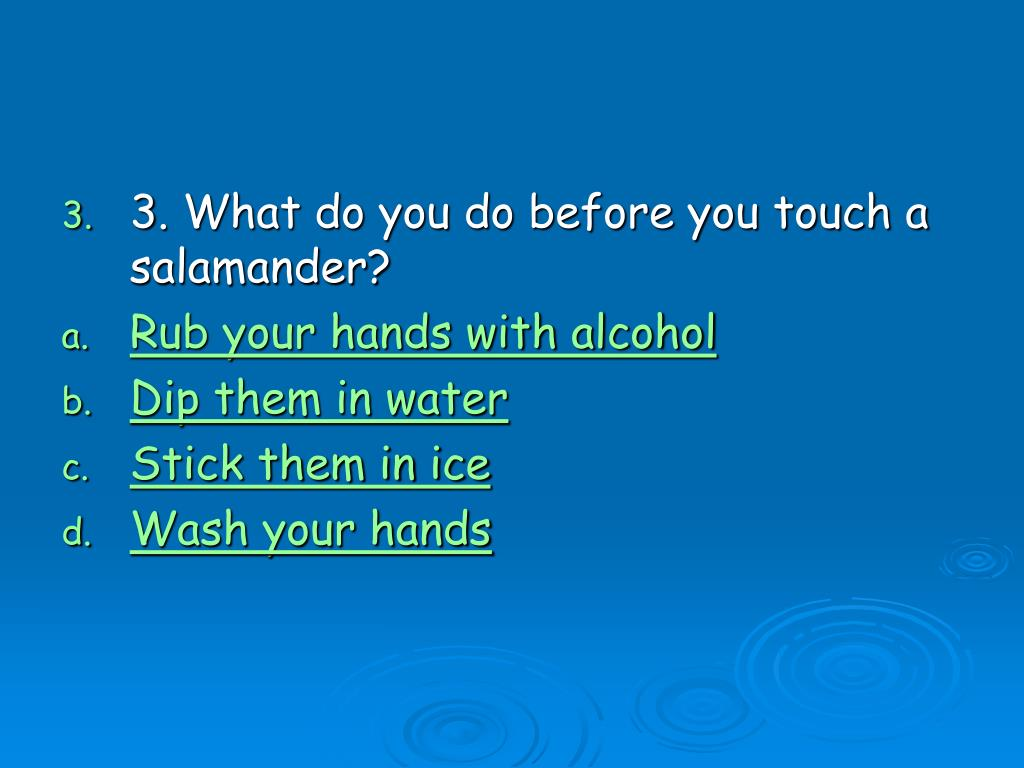 3. What do you do before you touch a salamander?