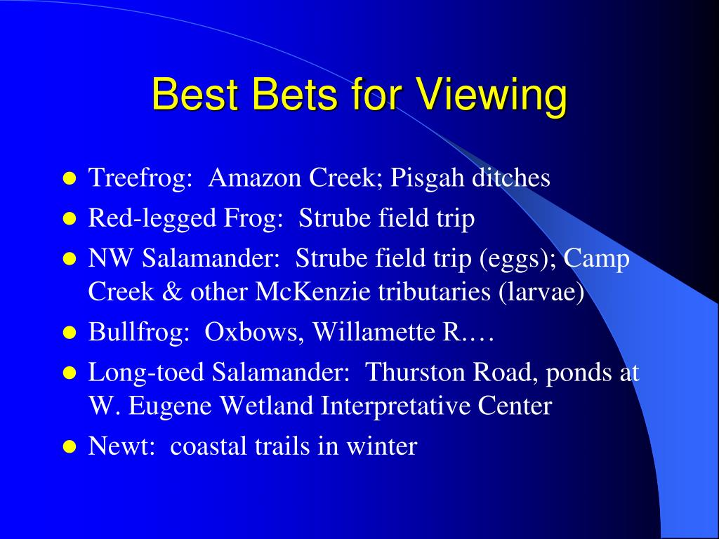 Best Bets for Viewing