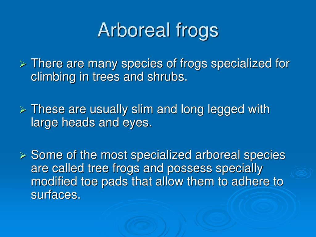 Arboreal frogs
