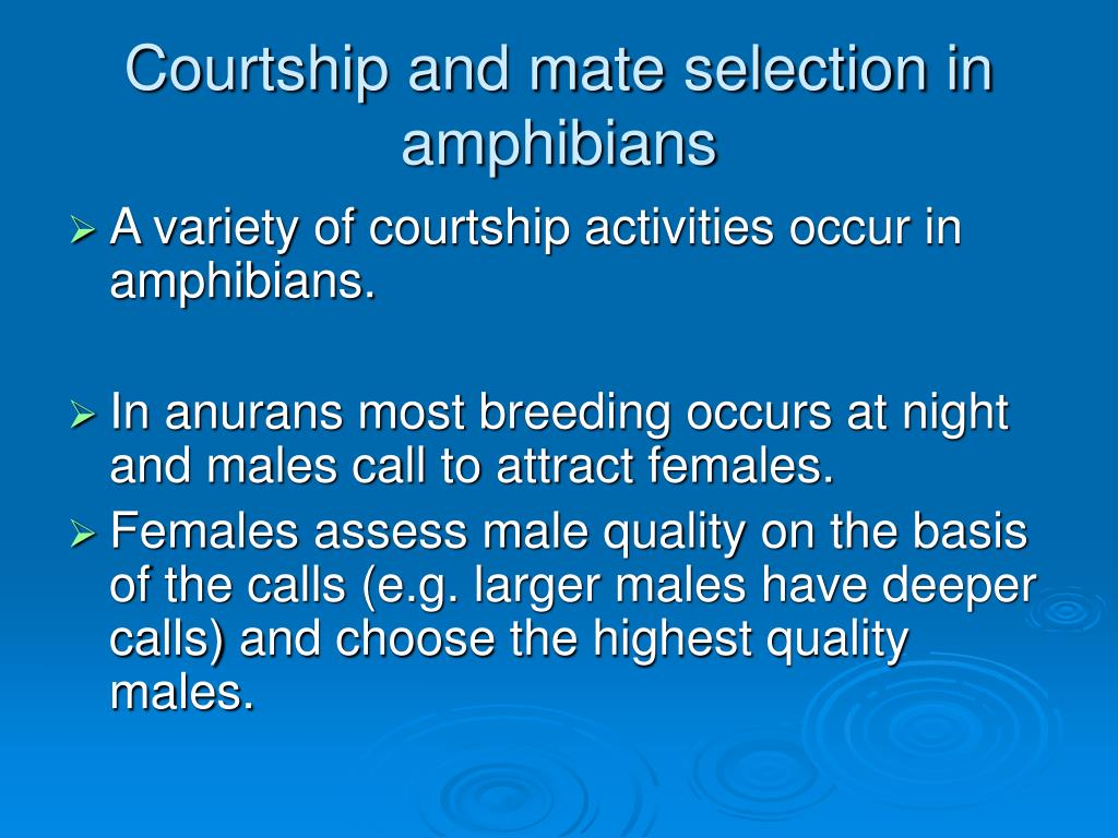 Courtship and mate selection in amphibians
