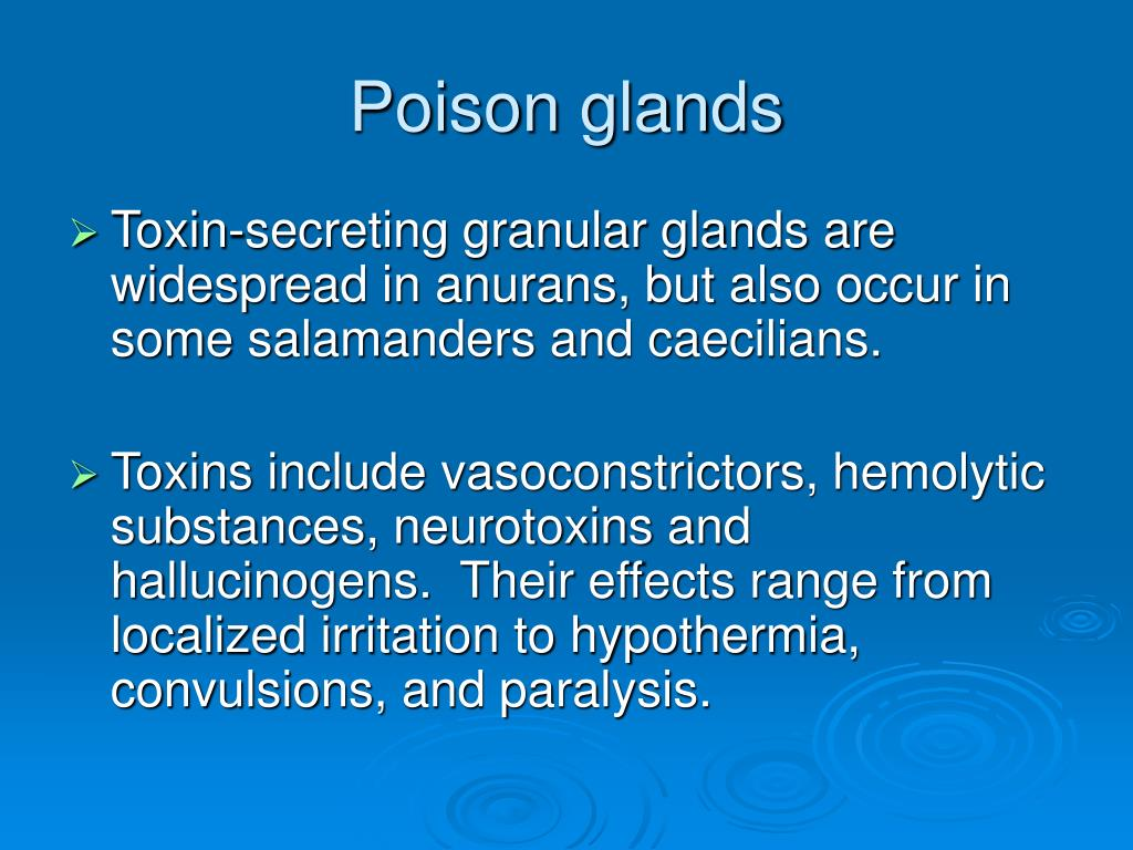 Poison glands
