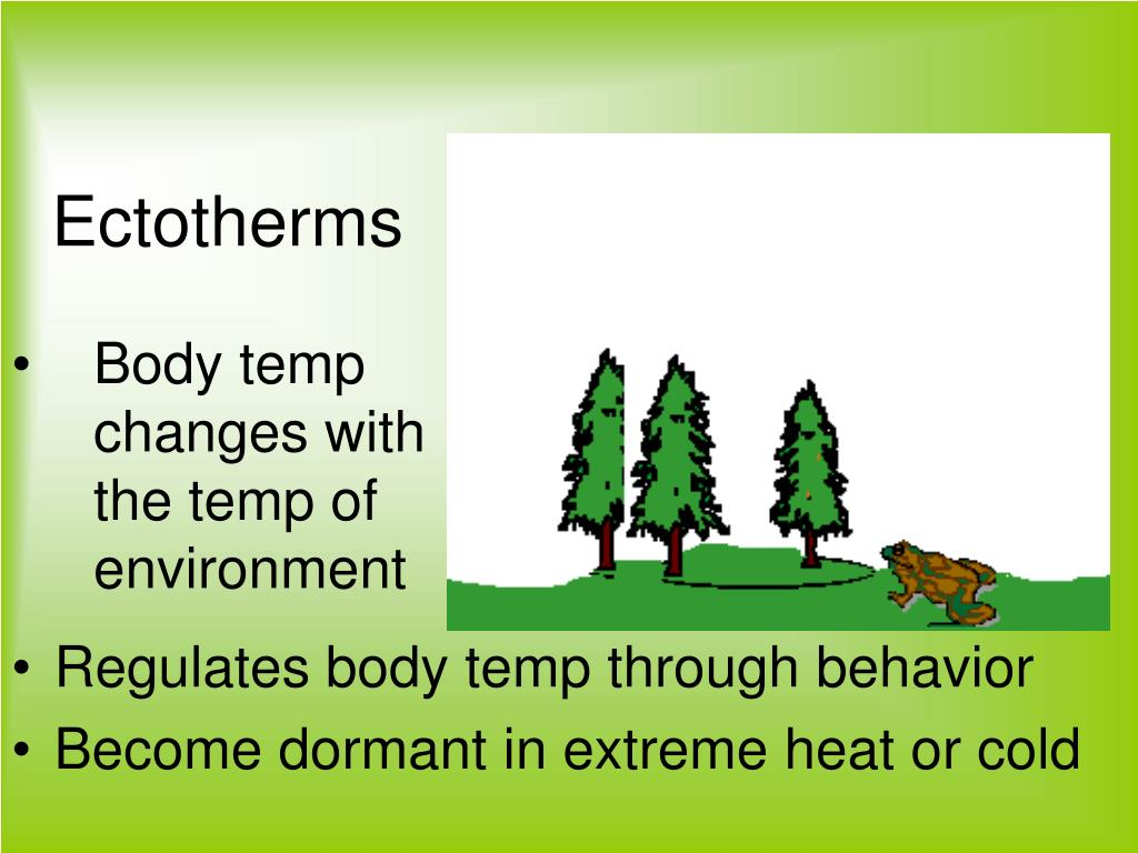 Body temp changes with the temp of environment