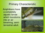 primary characteristic
