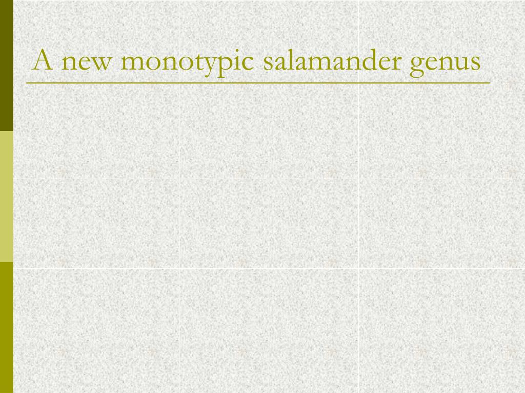 A new monotypic salamander genus