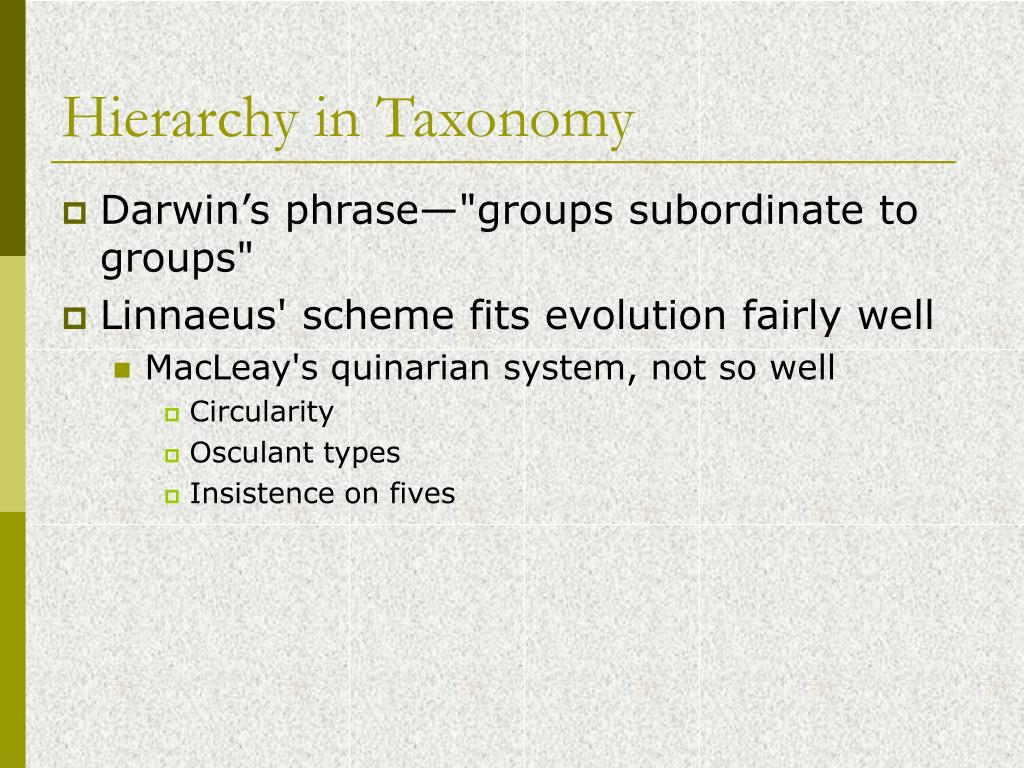 Hierarchy in Taxonomy
