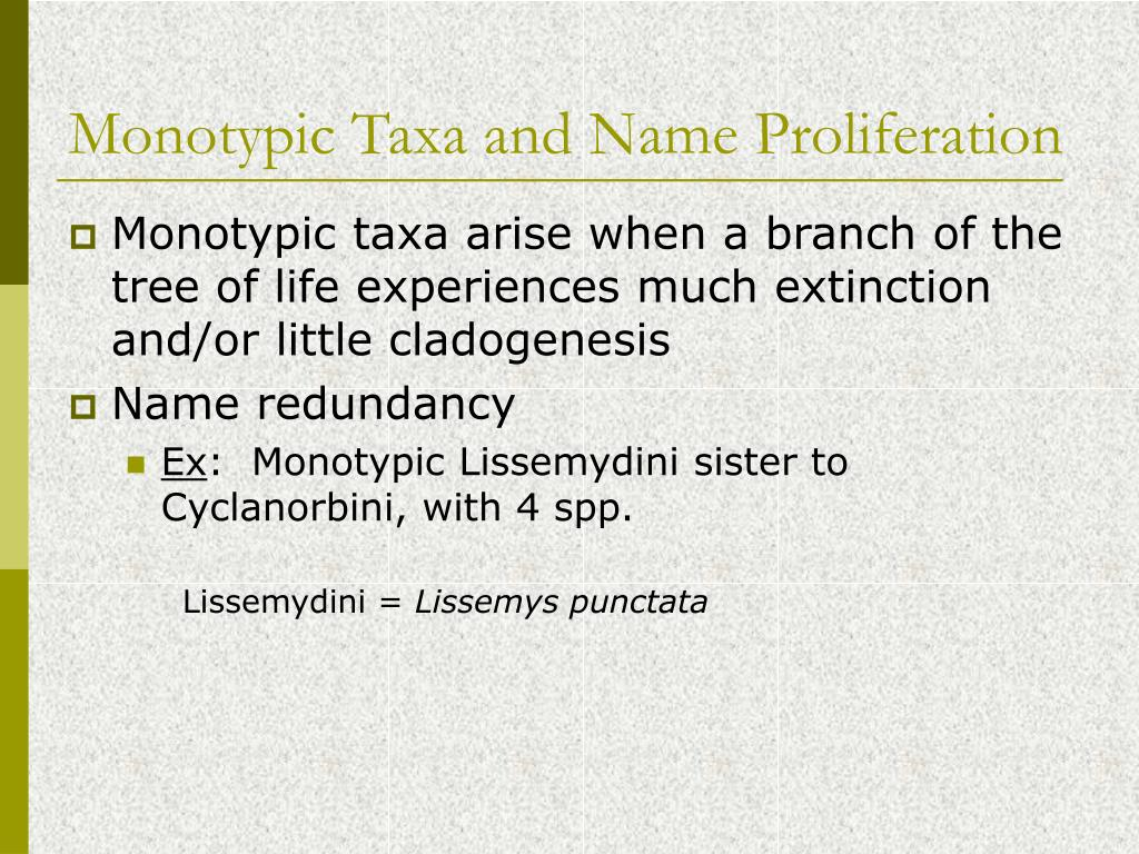 Monotypic Taxa and Name Proliferation