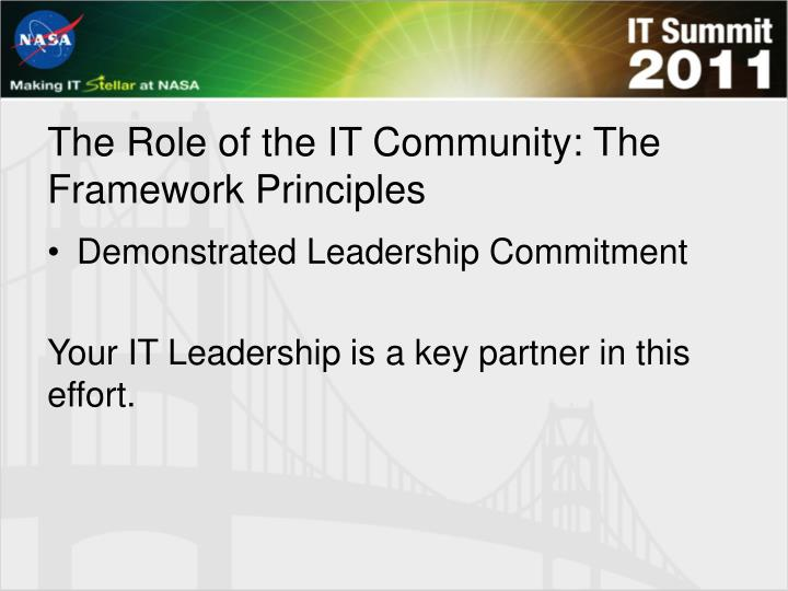 The Role of the IT Community: The Framework Principles