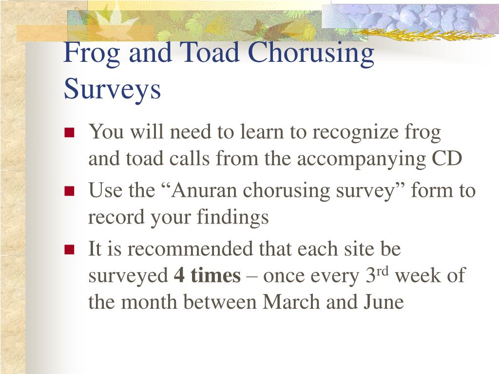 Frog and Toad Chorusing Surveys