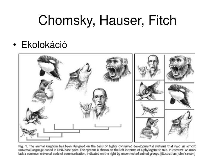 Chomsky, Hauser, Fitch