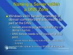 naming a server within a dns zone