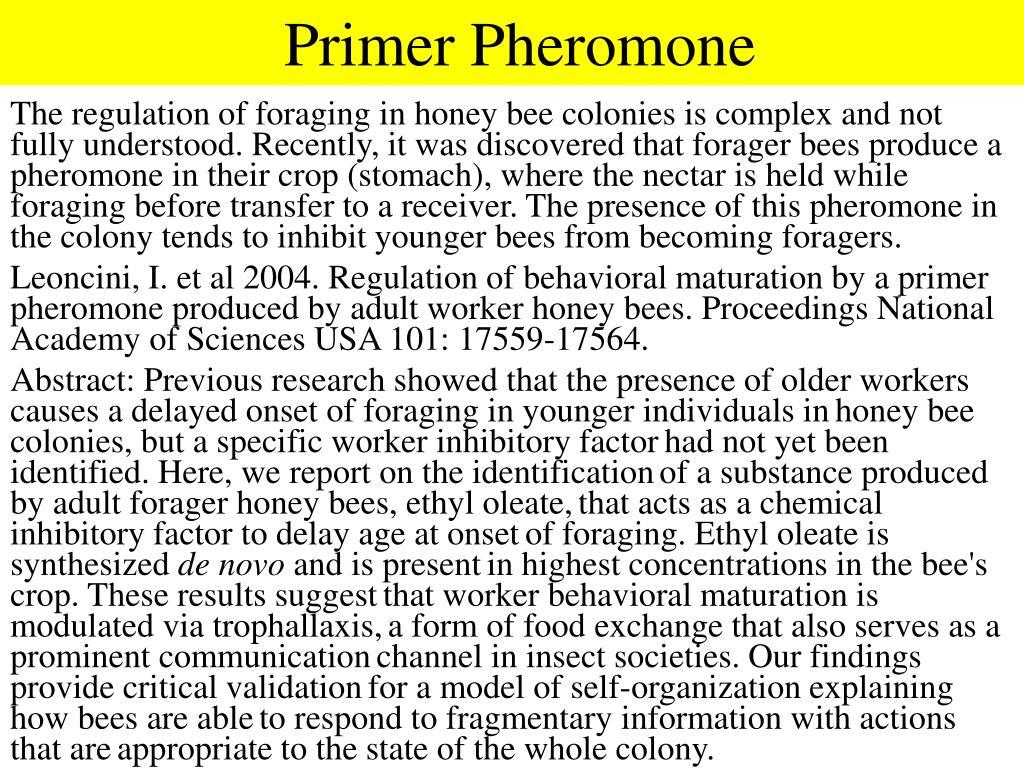 Primer Pheromone