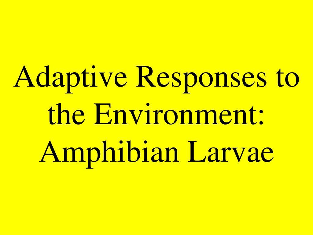 Adaptive Responses to the Environment: Amphibian Larvae