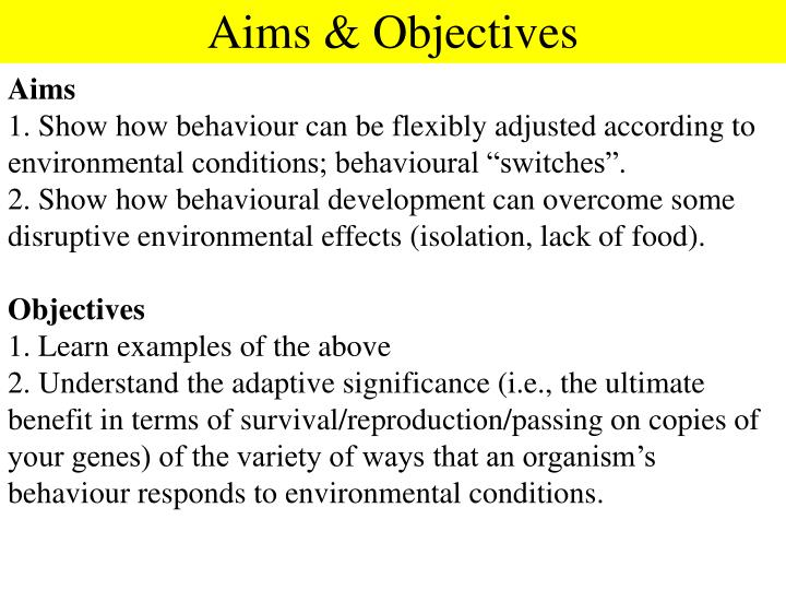Aims & Objectives
