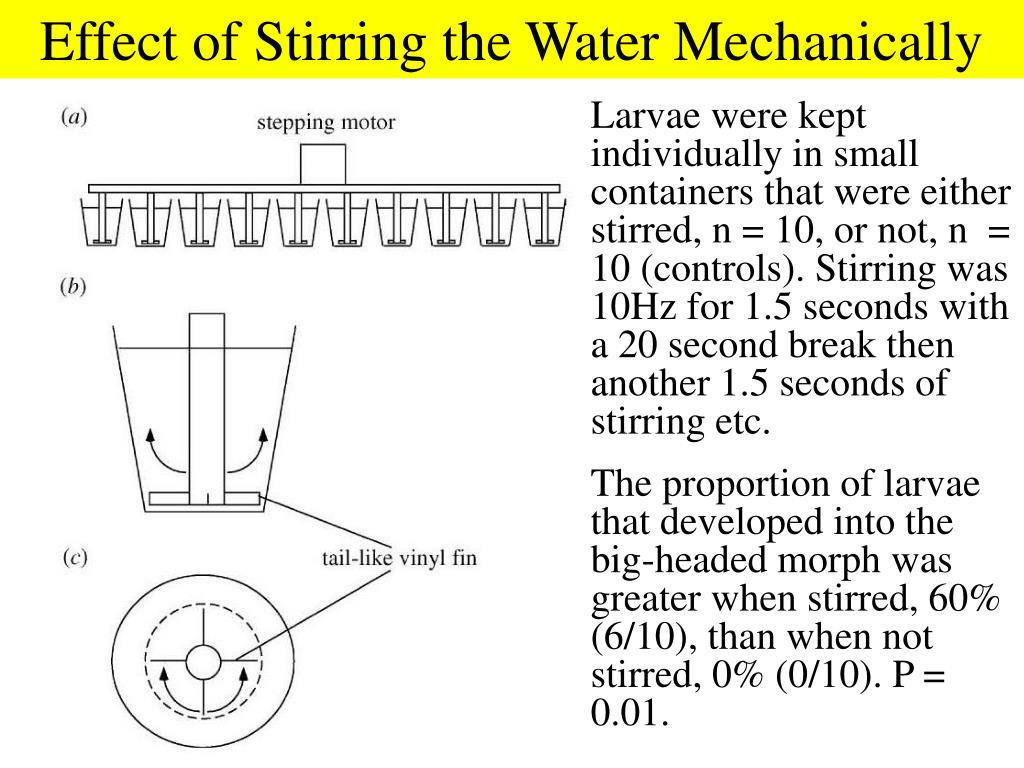 Effect of Stirring the Water Mechanically