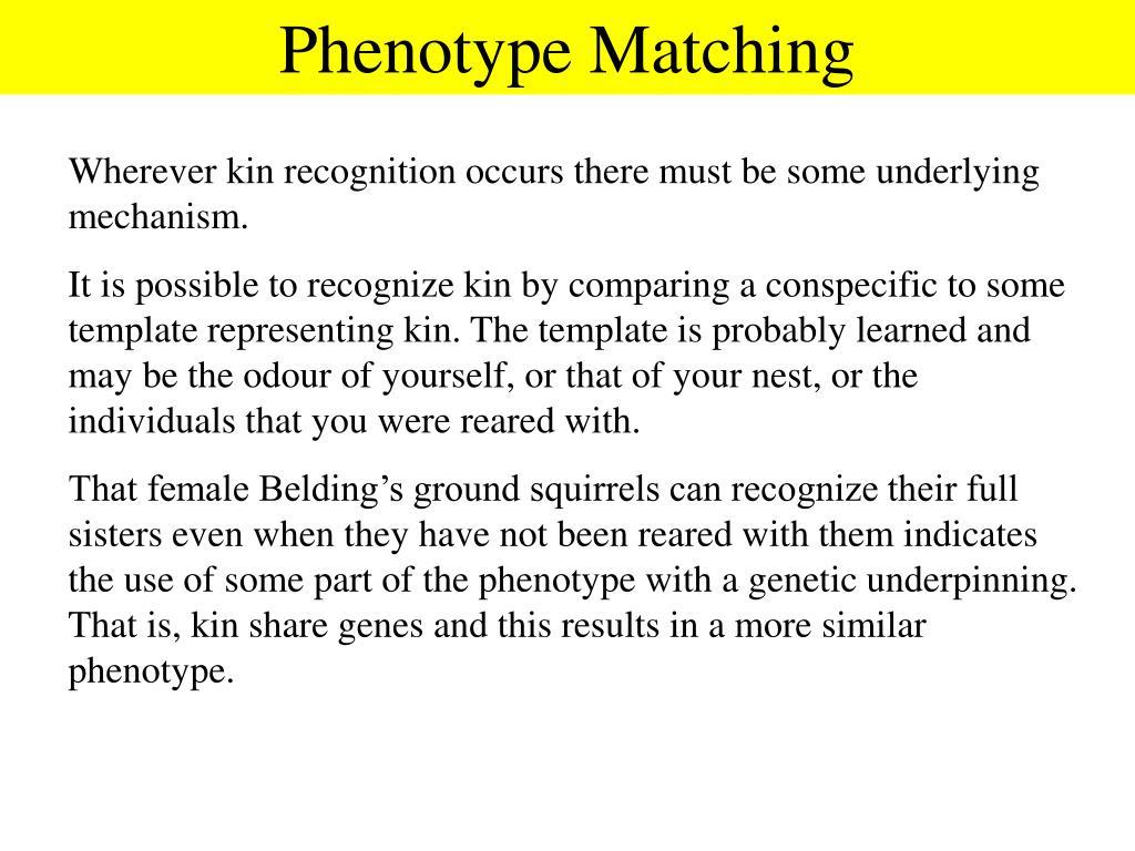 Phenotype Matching