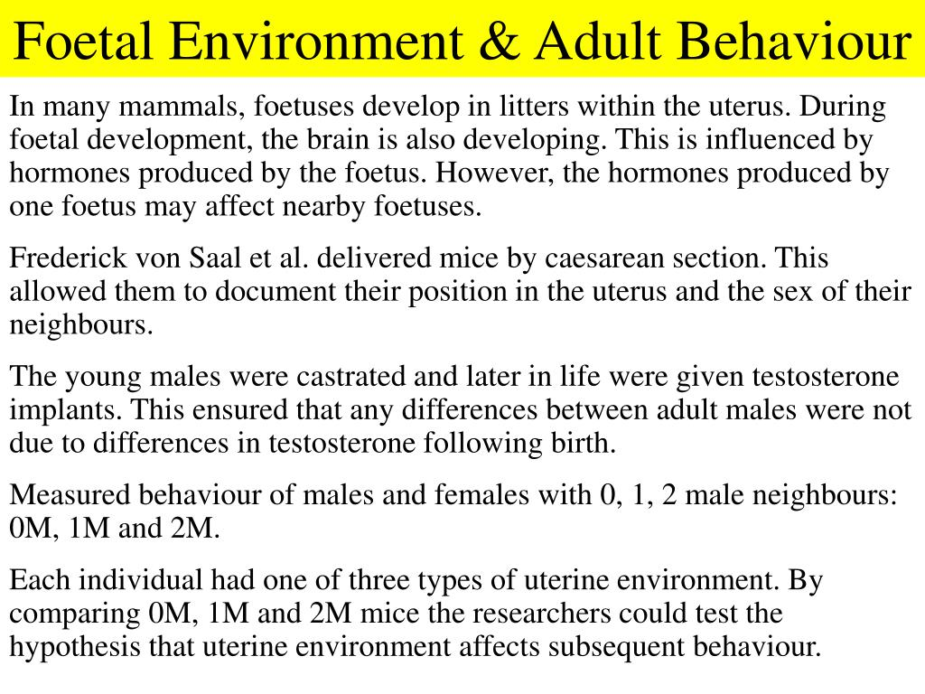 Foetal Environment & Adult Behaviour