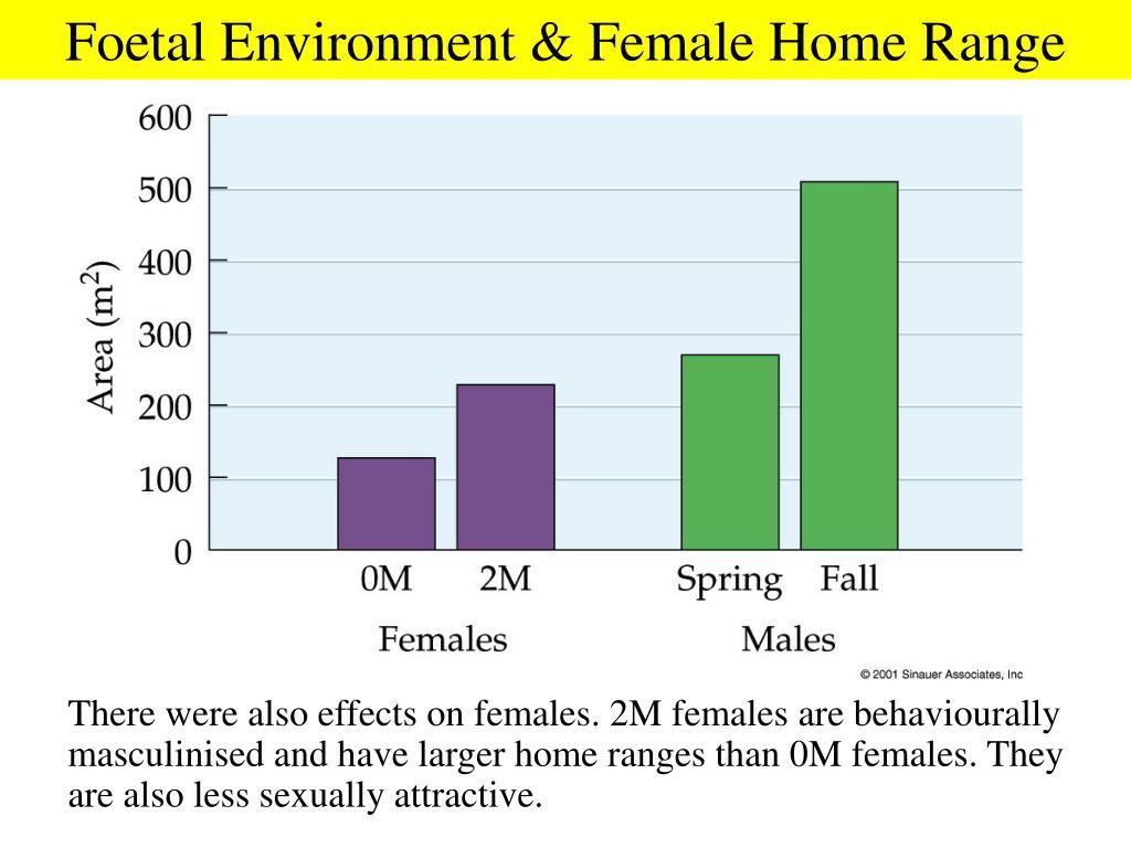 Foetal Environment & Female Home Range