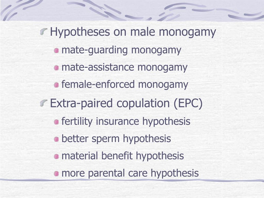 Hypotheses on male monogamy