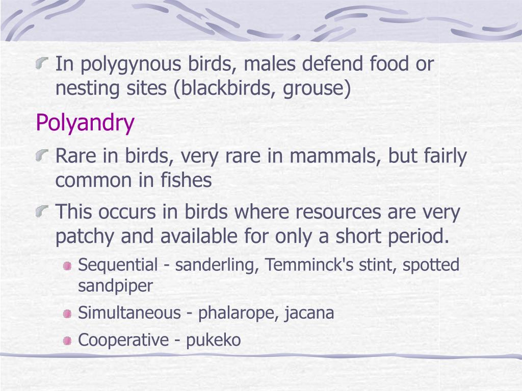 In polygynous birds, males defend food or nesting sites (blackbirds, grouse)