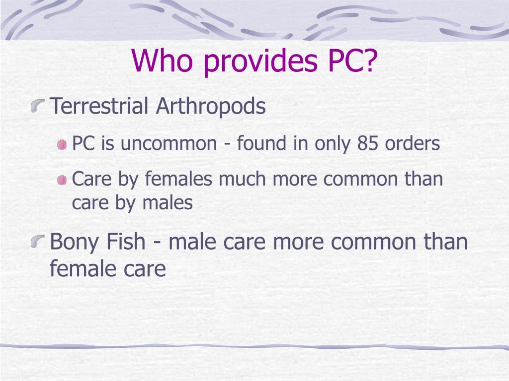 Who provides PC?