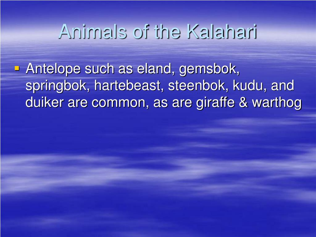 Animals of the Kalahari