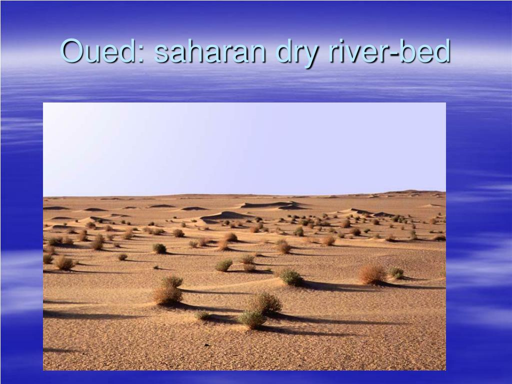 Oued: saharan dry river-bed