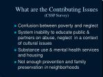 what are the contributing issues cssp survey