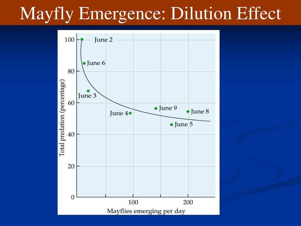 Mayfly Emergence: Dilution Effect
