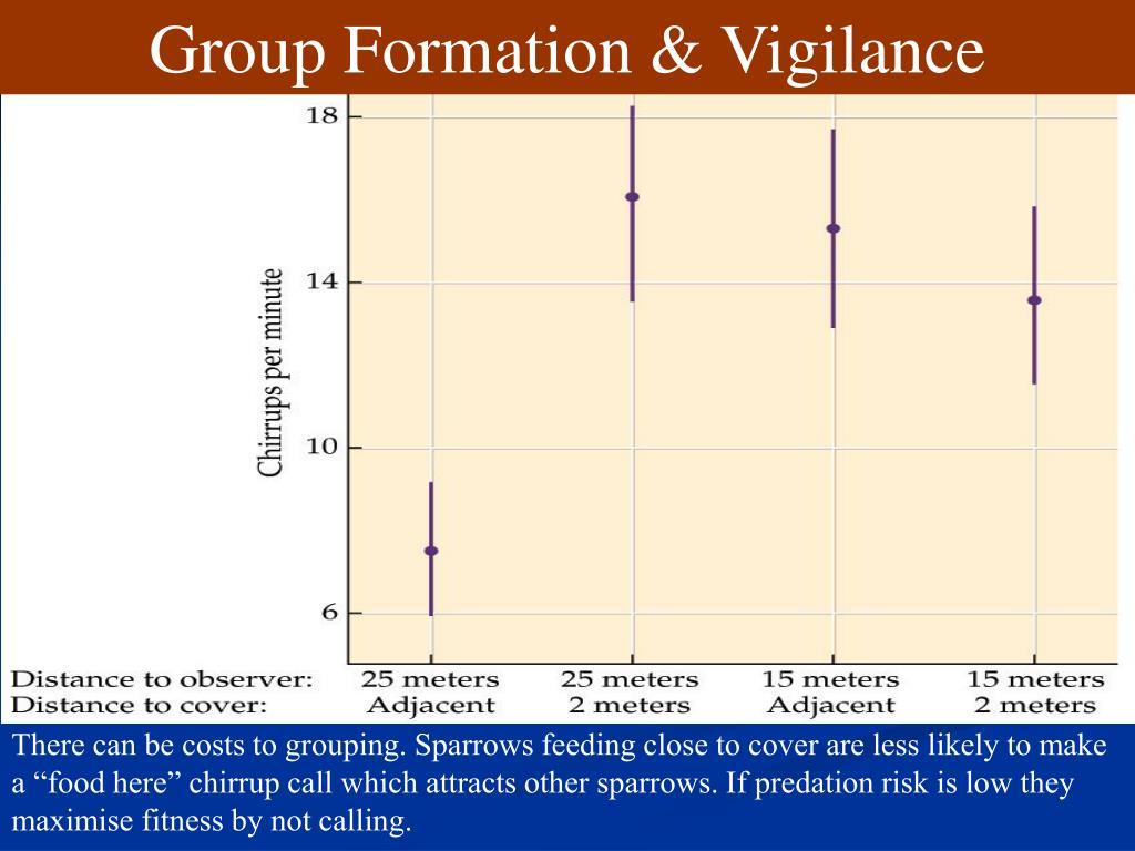 Group Formation & Vigilance