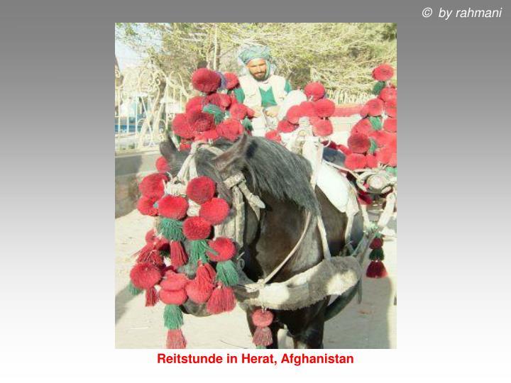 Reitstunde in Herat, Afghanistan