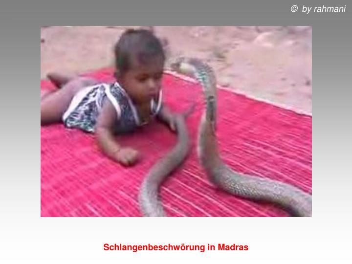 Schlangenbeschwörung in Madras