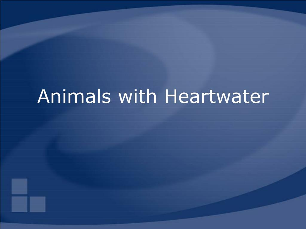 Animals with Heartwater